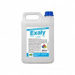 EXALY - LIMPADOR CONCENTRADO SAFE PARK